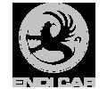 EdniCar